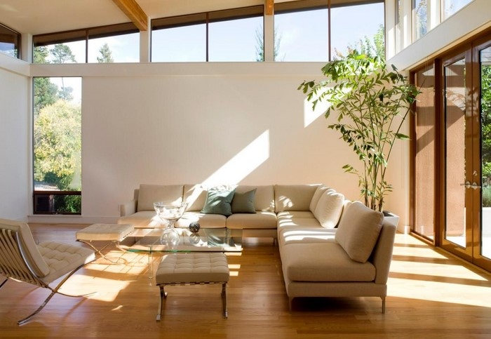 Yard Get rid of Programs — Clerestory Design Get rid of
