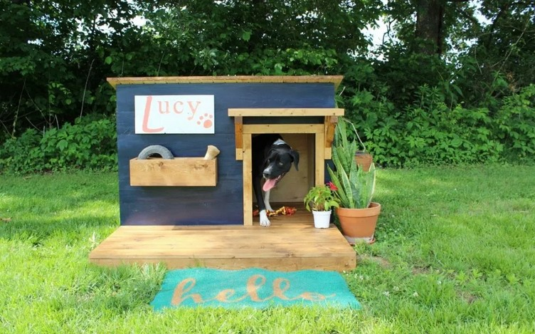 DO-IT-YOURSELF Doghouses