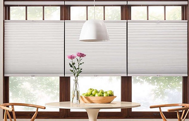 Privateness as well as Gentle Blocking Functions Through The netherlands Window blinds